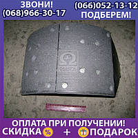 Колодка тормозная МАЗ 5440, КАМАЗ задняя правая (пр-во ТАиМ) (арт. 5440-3502090)