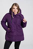 Демисезонная куртка больших размеров К 0057 с 02