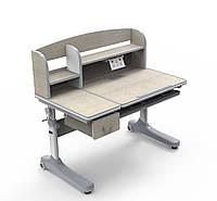 Парта-трансформер с надстройкой для школьника Cubby Ammi Grey