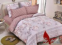2 сп. комплект постельного белья с компаньоном TAG, сатин люкс, 100% хлопок, подарочная коробка S288