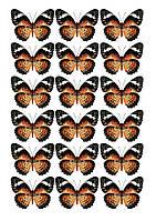 Бабочки 11 ассорти  Вафельная картинка