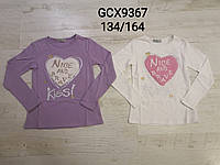 Реглан для девочек оптом, Glo-story, 134-164 см,  № GCX-9367