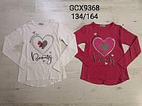 Реглан для девочек оптом, Glo-story, 134-164 см,  № GCX-9368, фото 1