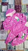 Костюм двойка утепленный с начесом  детский для девочек Hello Kitty 1-4 года, фото 3