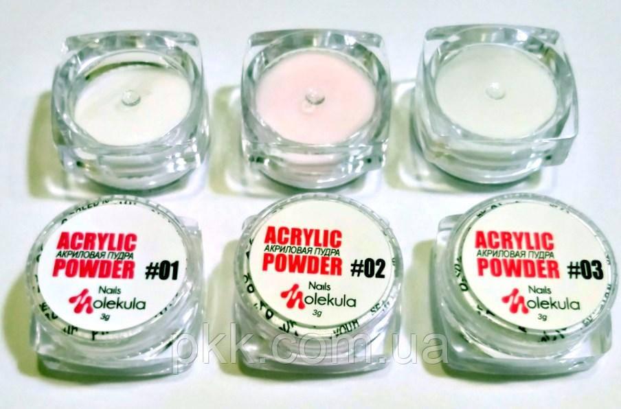 Акриловая пудра для дизайна ногтей  Nails MOLEKULA 3г