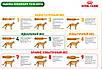 Корм для кошек от 7 лет Royal Canin SENIOR CONSULT STAGE 2 Pouches 0,1 кг, фото 2
