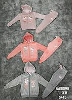 Велюровый утепленный костюм 2 в 1 для девочек оптом, Setty Koop, 3/4-7/8 лет,  № IA88098