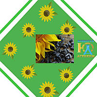 Насіння соняшнику АС 34110