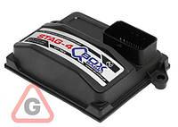 Блок управления Stag-4 Q-BOX Basic (W1Y-0304-Q-BOX)