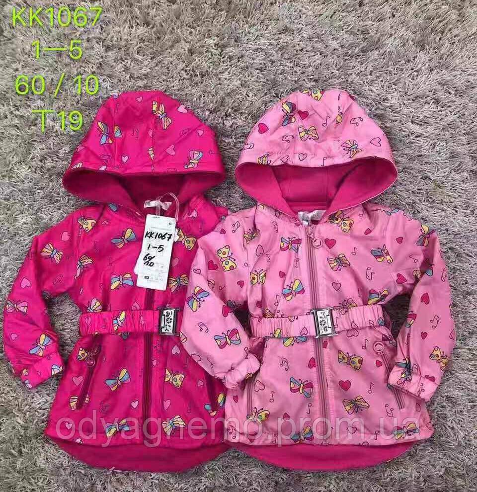 Куртка для дівчаток S&D оптом , 1-5 років. Артикул: KK1067