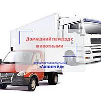 Домашний переезд с животными по Украине