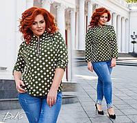Женская стильная блузка в горох №41325.1 (р.42-56) оливка, фото 1
