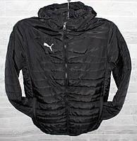 """Куртка мужская демисезонная стеганая ПУМА, размеры 48-56 """"MODERN"""" купить недорого от прямого поставщика"""