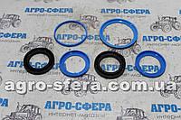 Ремкоплект оси стойки АГ, АГД 1,8-20; 2,1-20 нового образца (4802)