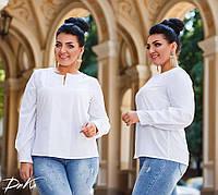 Женская стильная блузка №15231 (р.42-56) белый