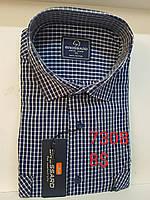 Рубашка 100 % коттон Brossard- 7308