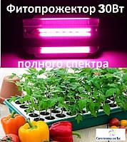 Фитопрожектор светодиодный полного спектра для выращивания цветов и других растений 220V led 30w 25*13см
