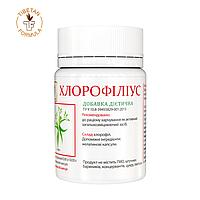 БАД Хлорофилиус хлорофилл укрепляет иммунитет 60 таблеток Тибетская формула