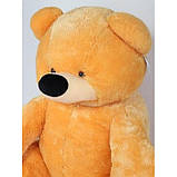 Большой плюшевый мишка Тедди медовый 140 см, фото 2