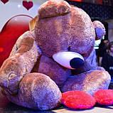 Огромный плюшевый мишка Тедди 2 метра коричневый, фото 2