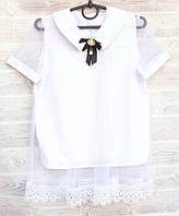 """Блузка школьная нарядная на девочку, короткий рукав 122-140 см """"VANILLA"""" недорого от прямого поставщика"""