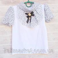 """Блузка школьная на девочку с коротким рукавом 122-140 см """"VANILLA"""" недорого от прямого поставщика"""