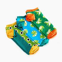 Носки женские короткие Dodo Socks Zabba 36-38 набор 3 пары (009641)