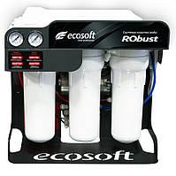 Система обратного осмоса Ecosoft RObust