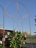 Опора шпалера для растений, фото 3