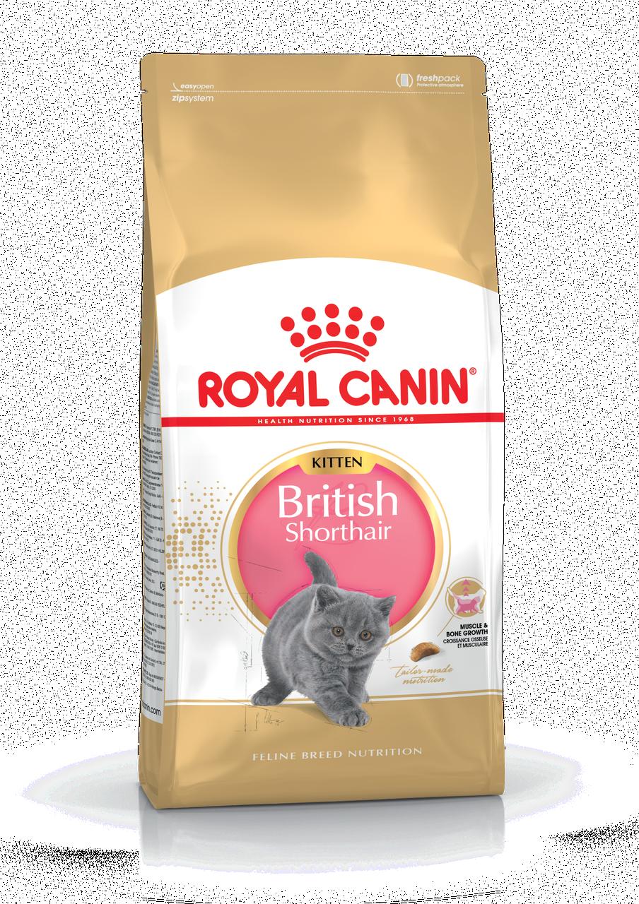 Корм для котят британской короткошерстной породы Royal Canin KITTEN BRITISH SHORTHAIR 2 кг