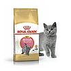 Корм для котят британской короткошерстной породы Royal Canin KITTEN BRITISH SHORTHAIR 2 кг, фото 2