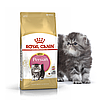 Корм для котят персидской породы Royal Canin KITTEN PERSIAN 10 кг, фото 2