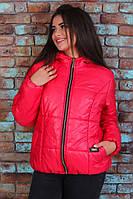 Куртка красная стеганная Большого размера