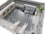 Патч-панель для разъемов Keystone, на 6-модулей с держателем, Hager FZ06MK, фото 2