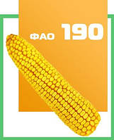 Насіння кукурудзи ДМС Лорд (МАЇС) ФАО 190
