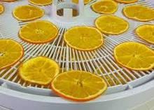 Электросушки для фруктів і овочів