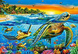 """Кастор пазлы """"Морские черепахи"""",1000 элементов, С-103652"""