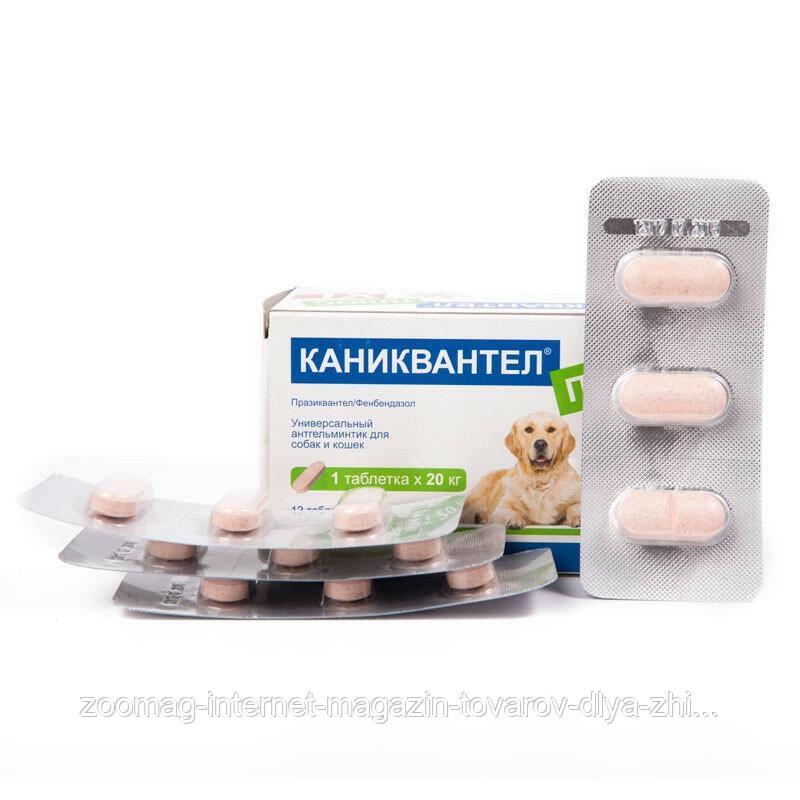 """Антигельминтные таблетки для кошек и собак """"Каниквантель Плюс XL"""" с ароматом мяса (1 табл.)"""