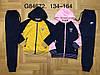 Трикотажный  костюм для девочек   134 /164 см