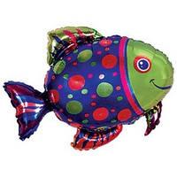 Качество! Красивый шар из фольги на День Рождения FM Рыба пятнистая 72см X 85см
