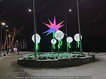 """Парк """"Зеленый гай"""" Цветы 6"""