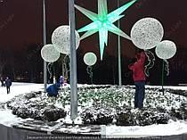 """Парк """"Зеленый гай"""" Цветы 7"""