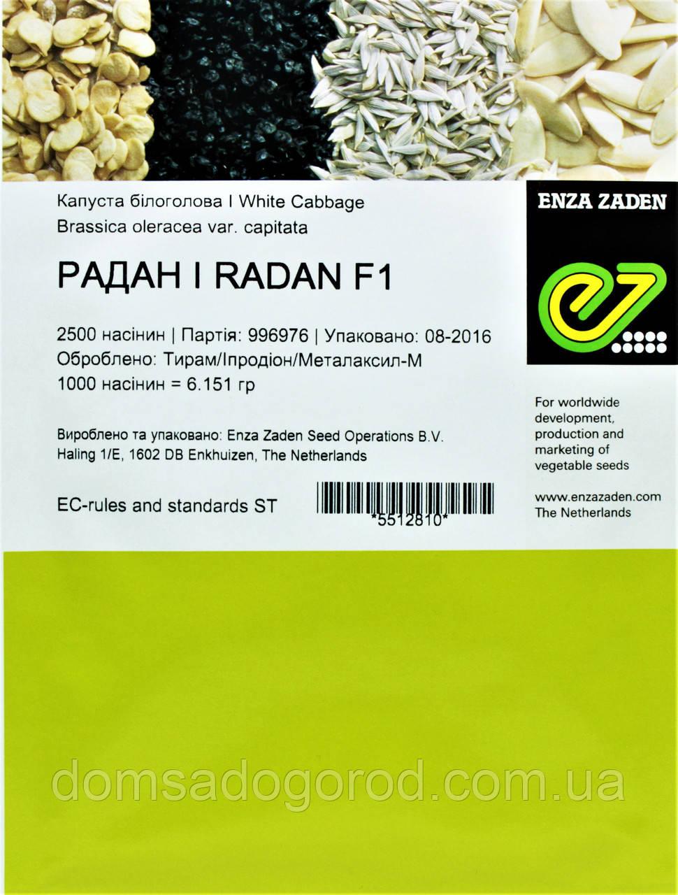 Капуста РАДАН F1 | RADAN Enza Zaden 2500 шт