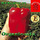 МЕНЧУЛ F1 / MENCHUL F1, семена сладкого кубовидного перца, 1000 семян, ТМ Erste Zaden, фото 2
