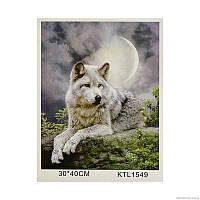Картина по номерам KTL 1549