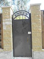 Ворота откатные кованые. Калитка кованая (пгт. Гостомель) 1