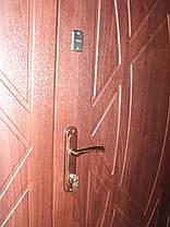 Входная дверь модель 1200 П3-210 vinorit-37 , фото 3