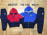 Спортивный утепленный костюм 2 в 1 для мальчика оптом, Grace, 116-146 см,  № B84707, фото 1