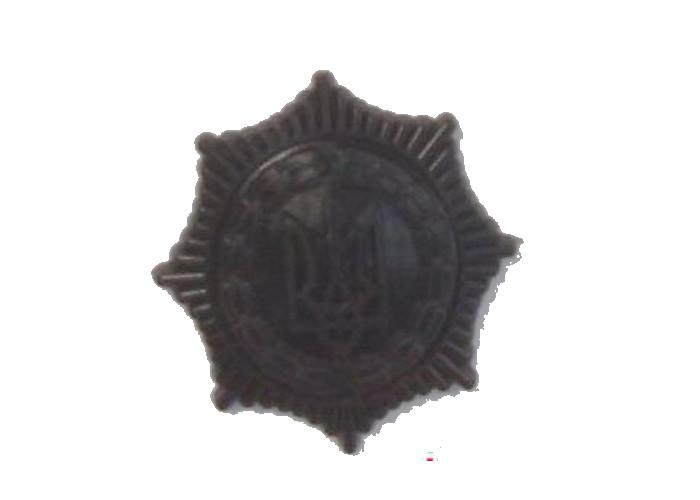 Эмблема Государственного департамента выполнения наказаний полевая