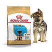Корм для щенков немецкой овчарки Royal Canin GERMAN SHEPHERD PUPPY 3 кг, фото 3